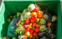 Gaspillage : près de 14% des aliments se perdent entre la ferme et le supermarché