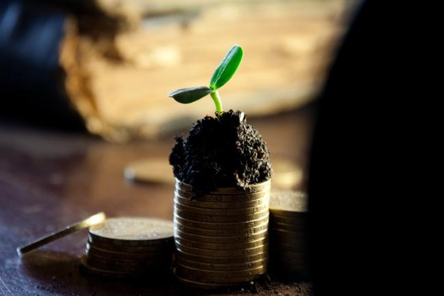 Les sociétés cotées versent toujours plus de dividendes
