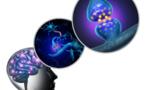 Sclérose en plaques : l'étude clinique du masitinib présentée à la conférence ACTRIMS-ECTRIMS
