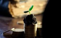 Les dividendes des sociétés cotées à leur plus haut historique