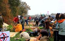 Notre-Dame-des-Landes : Vinci réclame une compensation de centaines de millions d'euros à l'Etat